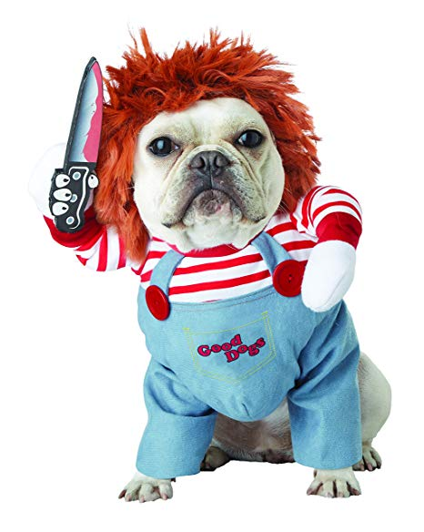 costume pour chien chucky halloween 2019